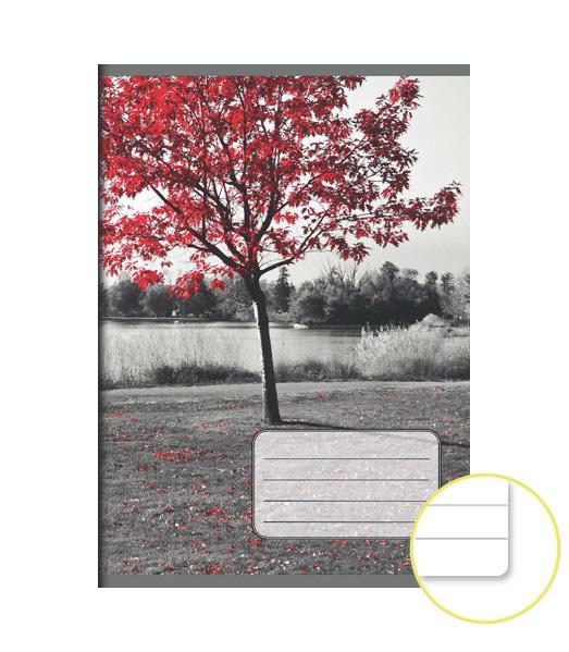 Zošit 544 EXTRA – 40 listový – linkovaný 8 mm s okrajom – Strom